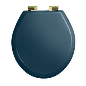 Oval painted moseley blue toilet seat with soft-close hinge Antique Gold